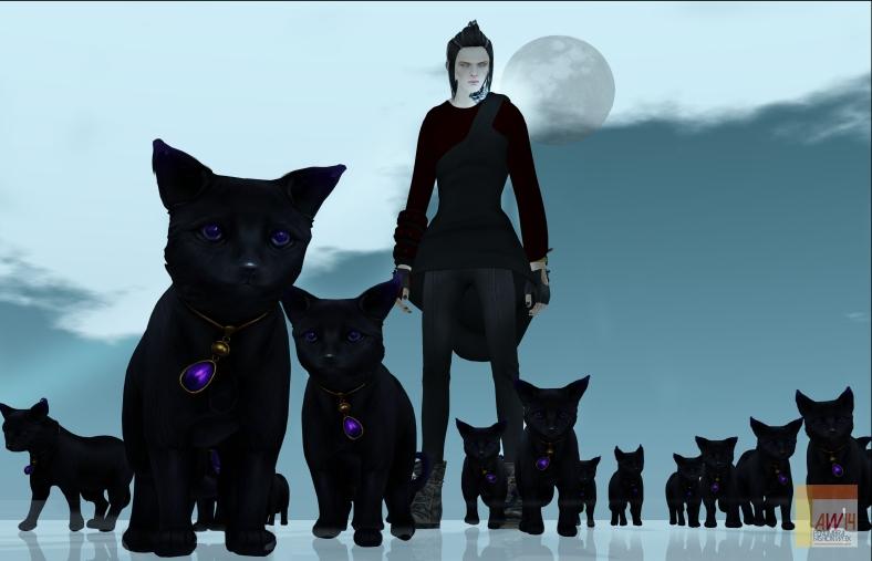 Black Catsloho